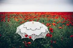 Campo de las amapolas con el paraguas Interpretación artística Fotos de archivo libres de regalías