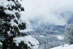 Campo de las montañas Imagen de archivo libre de regalías