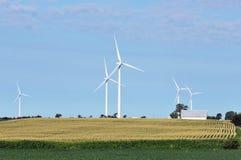 Campo de las turbinas de viento Imagen de archivo libre de regalías