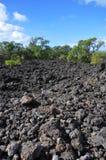 Campo de lava Fotos de archivo libres de regalías