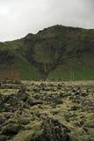 Campo de lava Fotos de archivo