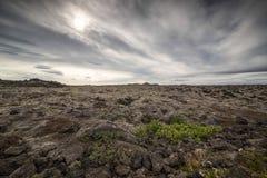 Campo de lava Imagenes de archivo