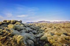 Campo de lava de Islandia Foto de archivo libre de regalías