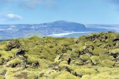 Campo de lava em Eldhraun Imagem de Stock Royalty Free