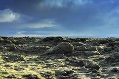 Campo de lava em Eldhraun Fotos de Stock Royalty Free