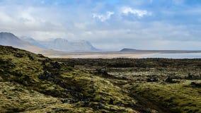 Campo de lava de Islândia foto de stock royalty free
