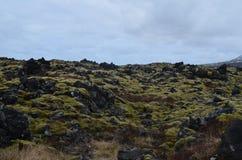 Campo de lava de Rocky Icelandic com musgo verde fotos de stock royalty free