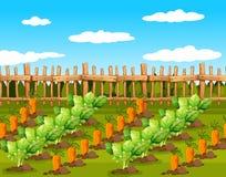 Campo de los cultivos de plantas comestibles stock de ilustración