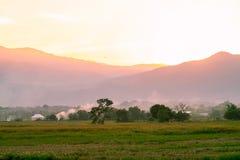 Campo de maíz con tierras de labrantío en la puesta del sol Foto de archivo