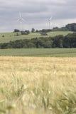 Campo de maíz con windenergy - retrato Foto de archivo