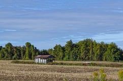 Campo de maíz cosechado Brown dado vuelta rastrojo Foto de archivo