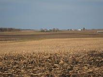 Campo de maíz cosechado en Iowa Imagen de archivo libre de regalías