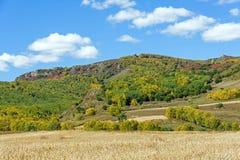 campo de maíz y bosque de la montaña en el otoño Fotos de archivo