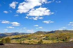 campo de maíz y bosque de la montaña en el otoño Imagen de archivo libre de regalías