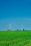Campo de milho e vertical de duas torres Foto de Stock