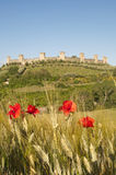 Campo de Monteriggioni, Toscana Italia Fotografía de archivo