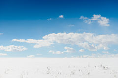 Campo de neve e céu azul Imagem de Stock Royalty Free
