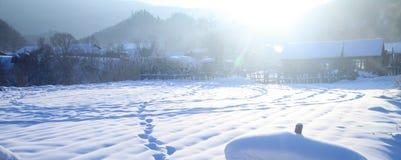 Campo de neve no inverno Fotos de Stock Royalty Free