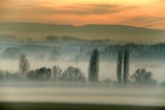 Campo de niebla Fotos de archivo