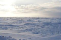 Campo de nieve pintoresco Imágenes de archivo libres de regalías