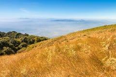 Campo de oro en el punto de vista de Kio Mae Pan, par del nacional de Doi Inthanon Foto de archivo libre de regalías