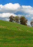 Campo de Pastorial Fotografia de Stock