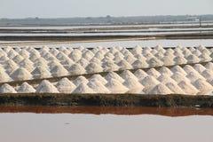 Campo de sal em Samut Sakhon, Tailândia Fotografia de Stock