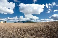 Campo de Sardinia Imagens de Stock Royalty Free