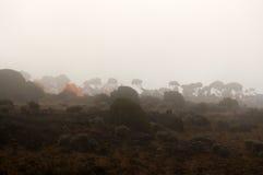 Campo de Shira en la ruta de Machame en niebla Fotos de archivo