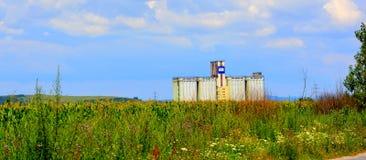 Campo de Silo y de maíz Tiempo de cosecha Paisaje rural agradable en los llanos de Transilvania, Rumania Imágenes de archivo libres de regalías