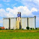 Campo de Silo y de maíz Tiempo de cosecha Paisaje rural agradable en los llanos de Transilvania, Rumania Fotografía de archivo