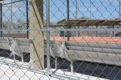 Campo de softball novo imagens de stock