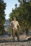Campo de Standing In Orange do fazendeiro Fotos de Stock