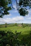Campo de Surrey en Wotton fotografía de archivo libre de regalías
