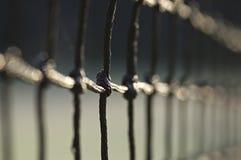 Campo de tenis Closup neto Imagen de archivo libre de regalías