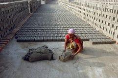 Campo de tijolo em Bengal-India ocidental Fotos de Stock