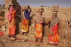 Campo de tijolo em Bengal-India ocidental imagens de stock royalty free