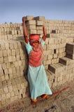 Campo de tijolo em Bengal-India ocidental Imagens de Stock