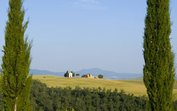Campo de TOSCÂNIA com cipreste e explorações agrícolas Imagens de Stock