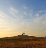 Campo de Toscana Fotografía de archivo libre de regalías