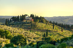 Campo de Toscana Imágenes de archivo libres de regalías