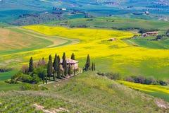 Campo de Toscana cerca de Pienza, Italia Fotografía de archivo