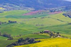 Campo de Toscana cerca de Pienza, Italia fotografía de archivo libre de regalías