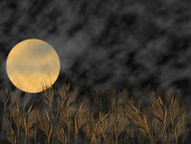 Campo de trigo libre illustration