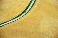 Campo de trigo aéreo Imagen de archivo