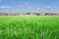 Campo de trigo cerca de la granja moderna Imágenes de archivo libres de regalías