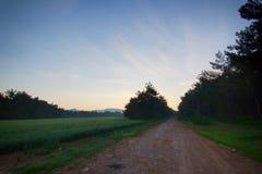 Campo de trigo con el camino en el bosque mientras que levantamiento del sol Foto de archivo libre de regalías