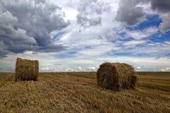 Campo de trigo cosechado con rollos del heno y un cielo tempestuoso Imagen de archivo