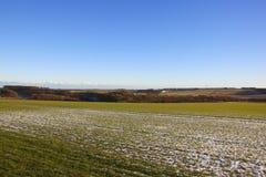 Campo de trigo de los wolds de Yorkshire Foto de archivo libre de regalías