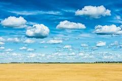 Campo de trigo de oro y opinión muy alta del cielo imagen de archivo